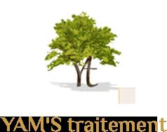 YAM'S TRAITEMENT